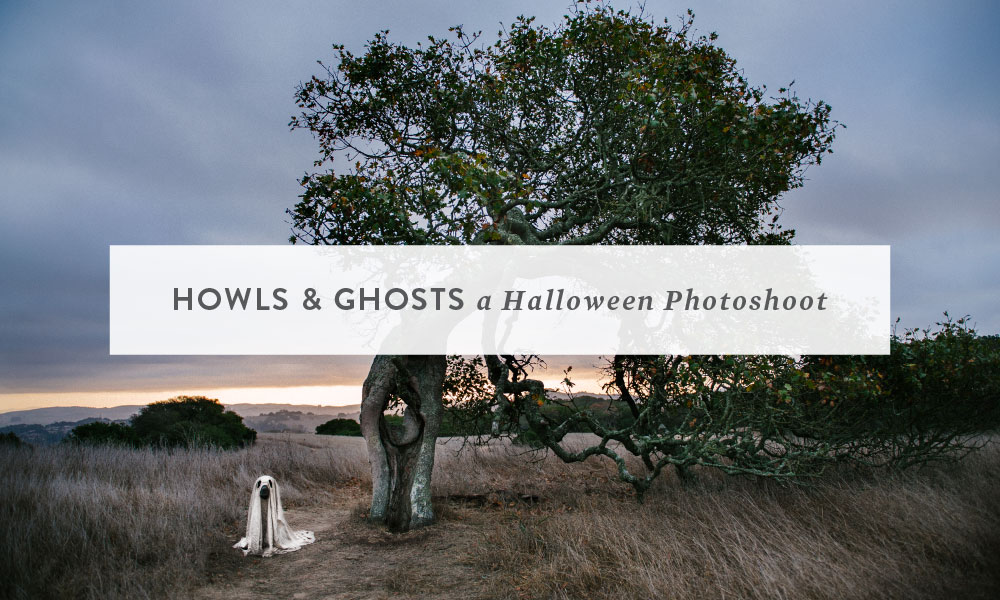Howls and Ghosts : A Halloween Theme Photoshoot