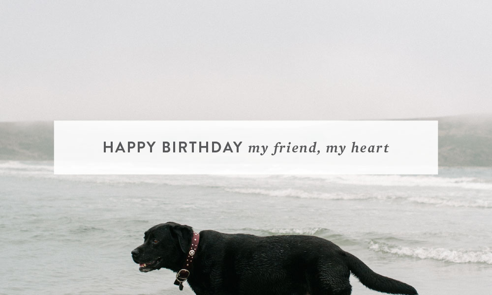 Happy Birthday My Friend, My Heart