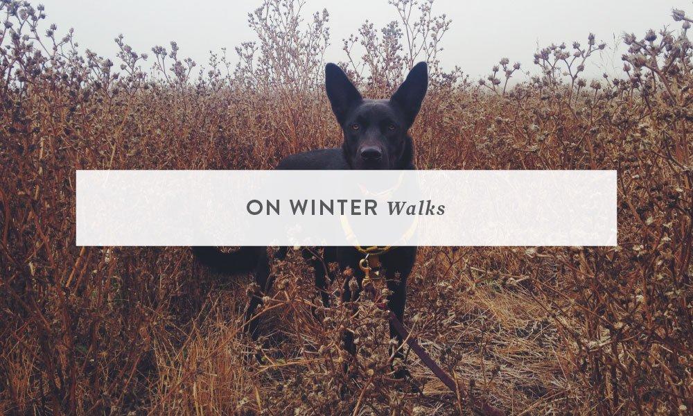 On Winter Walks