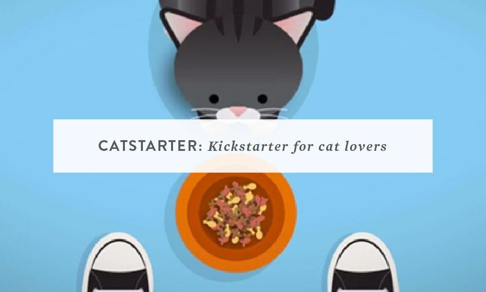 Catstarter: Kickstarter for Cat Lovers (a dream project)