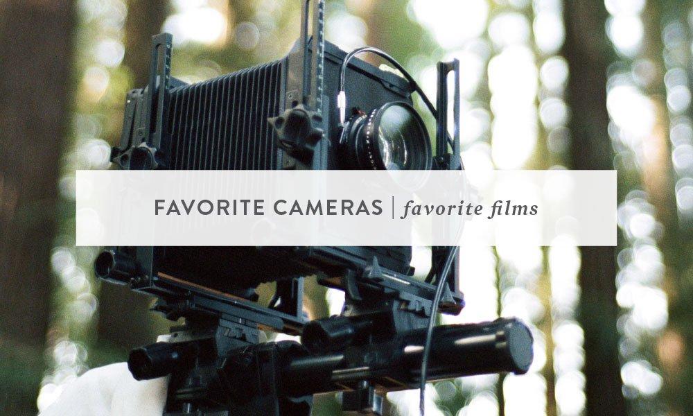Favorite Cameras, Favorite Film | Bay Area Animal Photographer