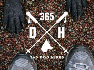 365 Dog Hikes