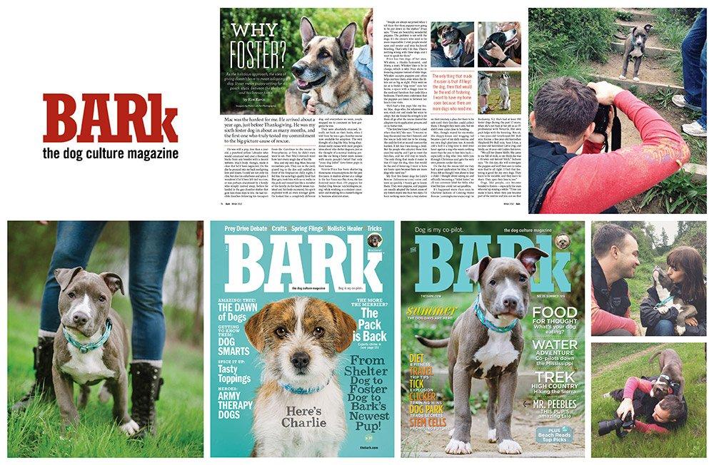 Bark1_group