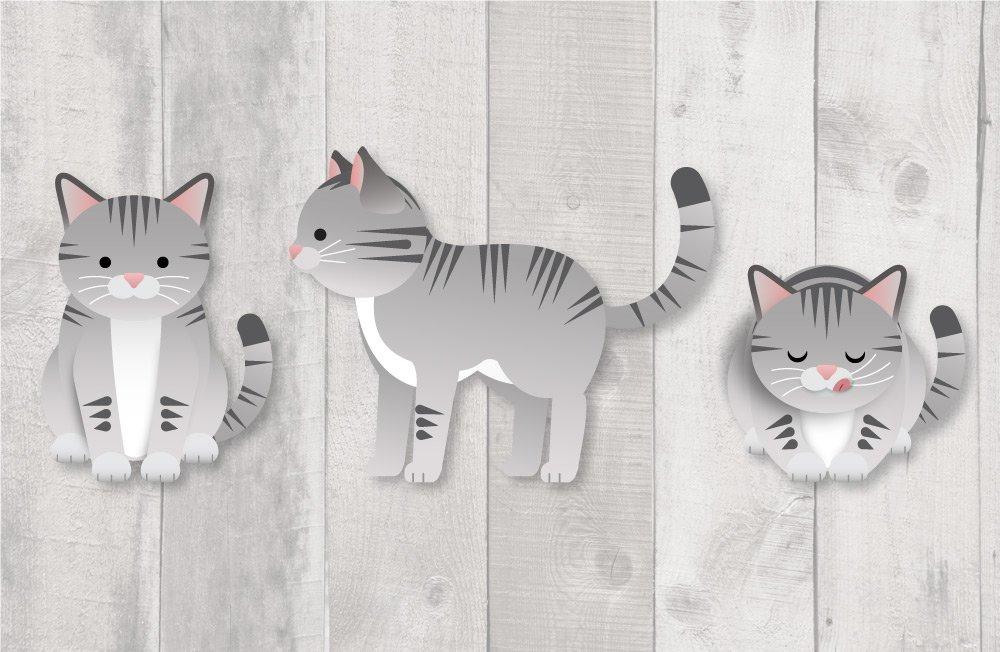 Catstarter_layout3