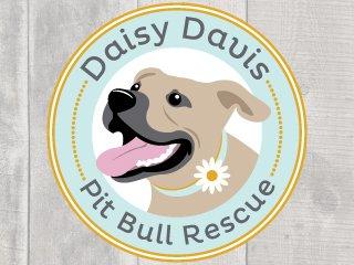 Daisy Davis Pit Bull Rescue