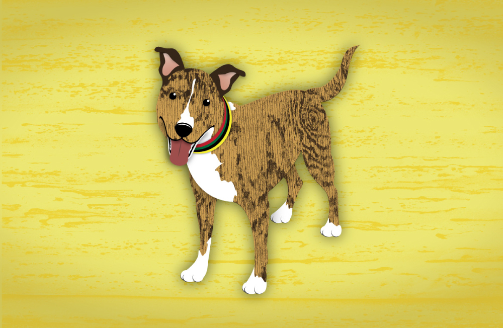DogsIllustrated_layout6