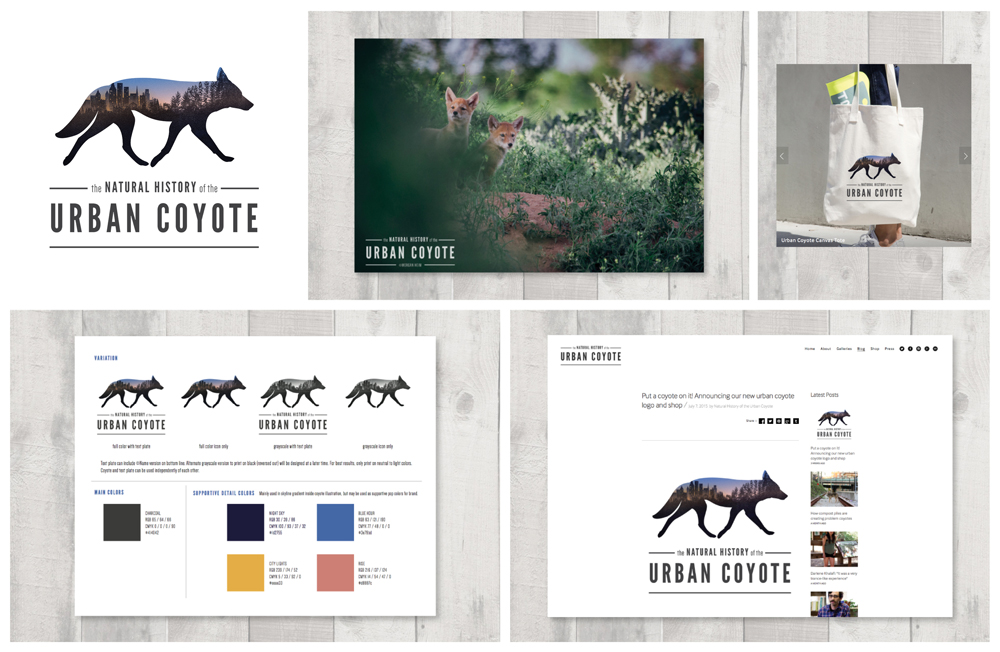 coyote_group