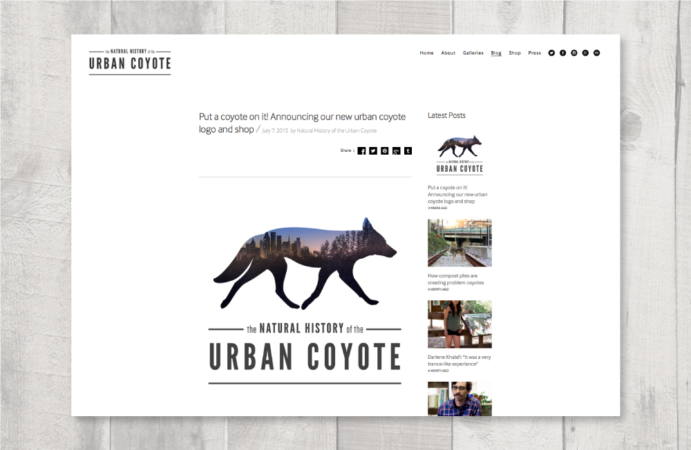 coyote_layout6