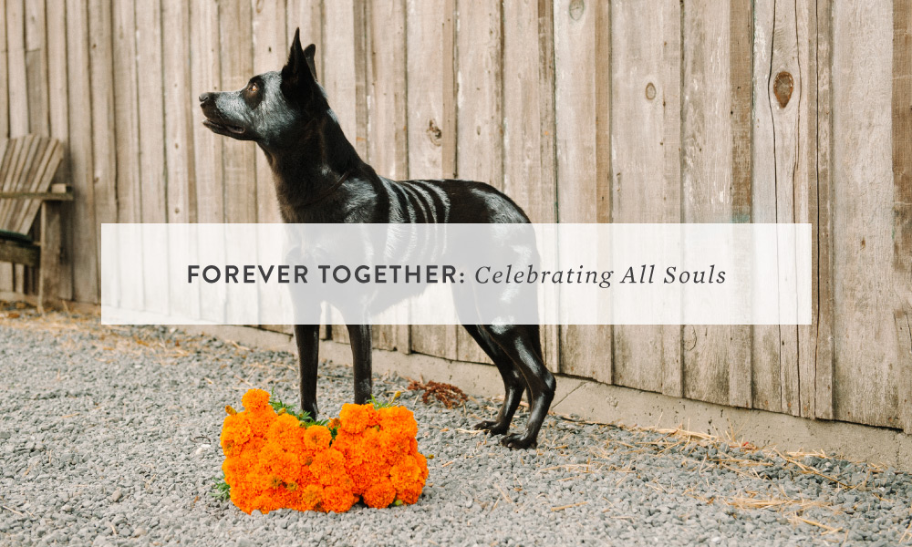 FOREVER TOGETHER: Celebrating All Souls