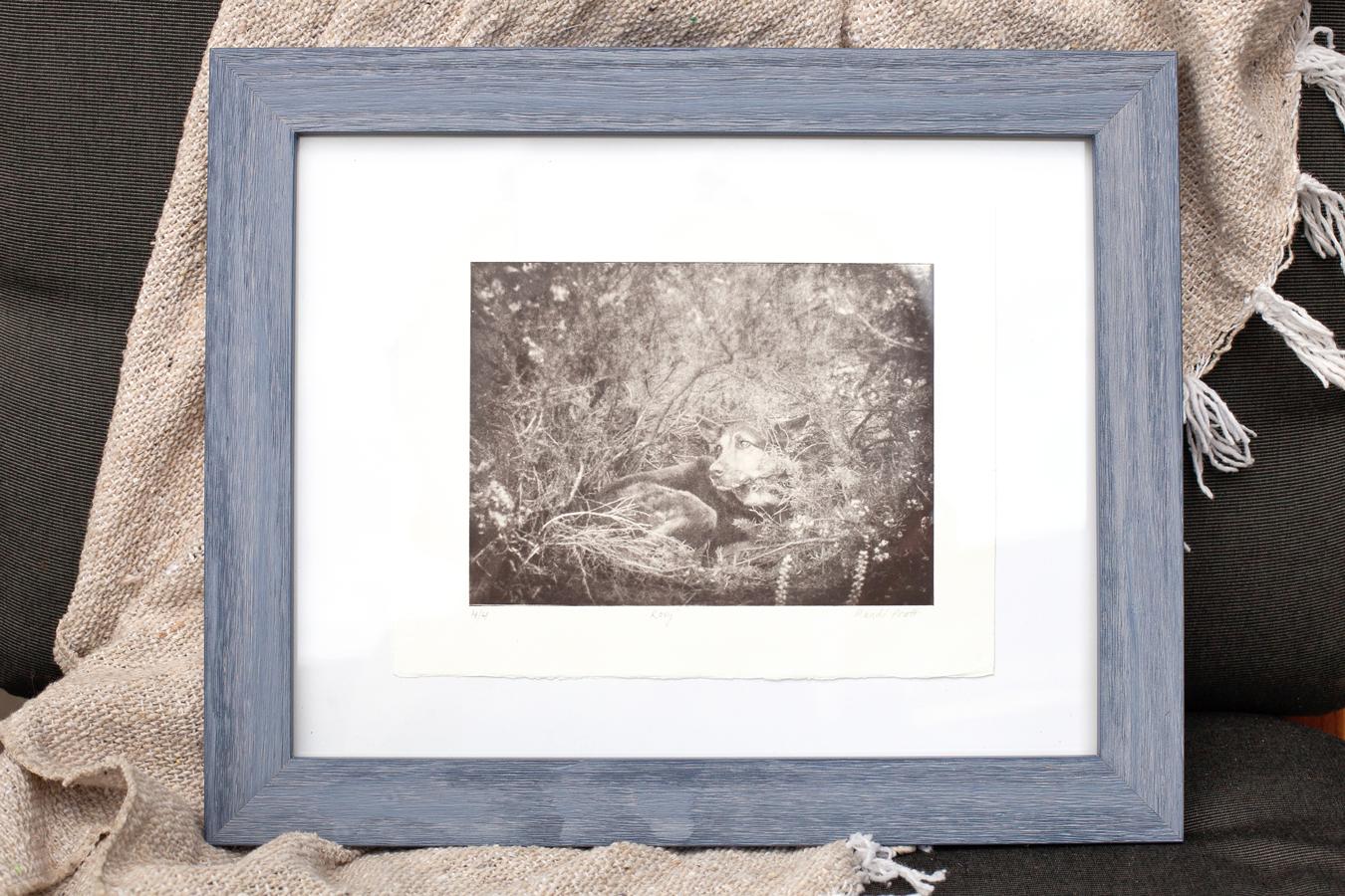 greyboy-etching-roxy-17