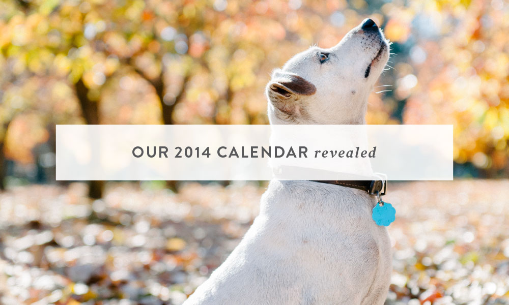 Our 2014 Calendar Revealed: Dogs, Cats and Beautiful Type