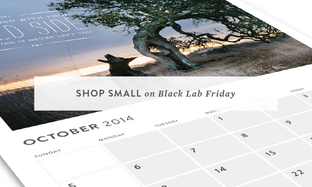 Lessons from the Water Bowl 2014 : Shop Small on Black LAB Friday
