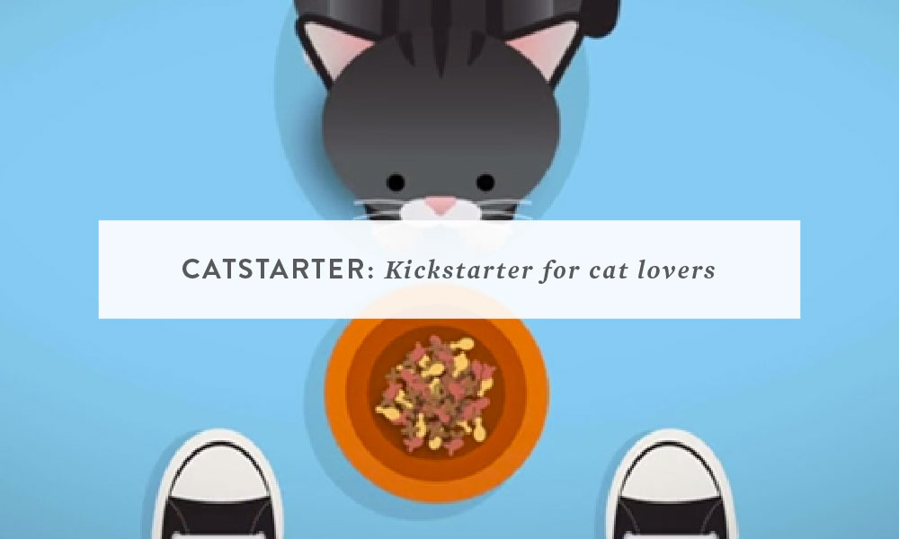 Catstarter: Kickstarter for Cat Lovers (a dream project)