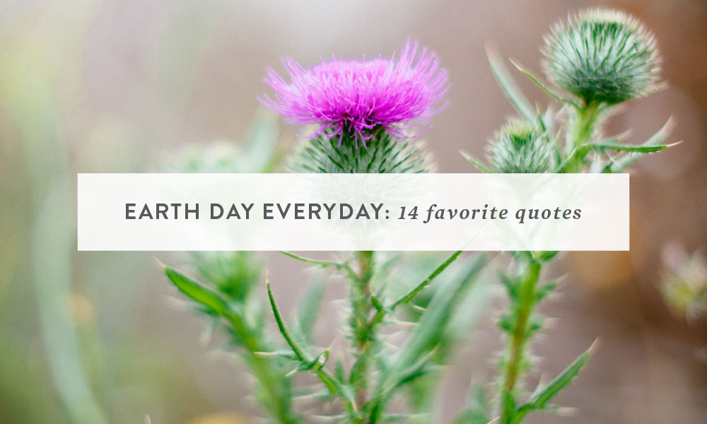 Earth Day Everyday : 14 Favorite Quotes | California Animal Photography