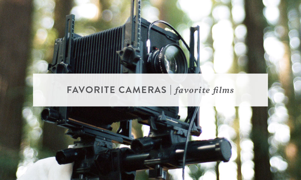 Favorite Cameras, Favorite Film | Bay Area Animal Photographer