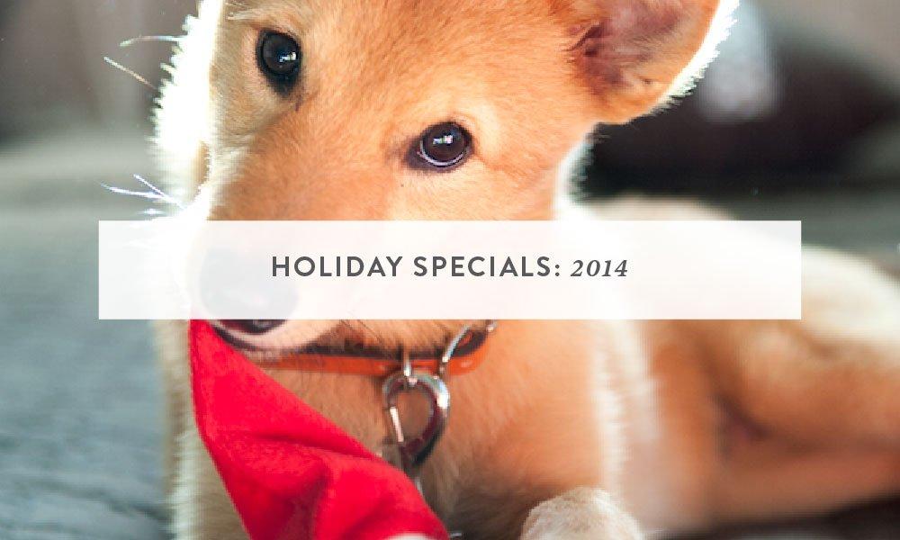 Holiday Specials 2014