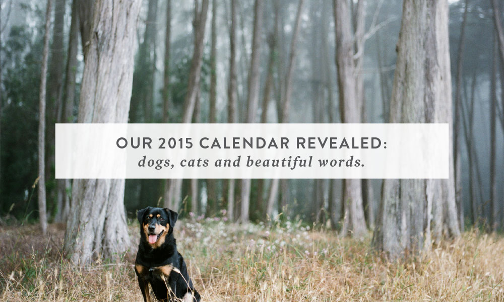 Our 2015 Calendar Revealed: Dogs, Cats and Beautiful Words