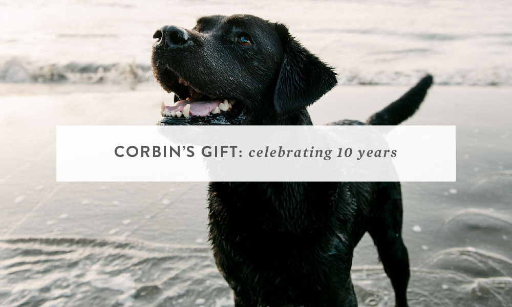 Corbin's Gift : Celebrating 10 Years