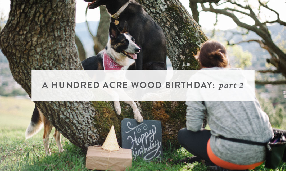 Themed Photoshoot : A Hundred Acre Wood Birthday (part 2)