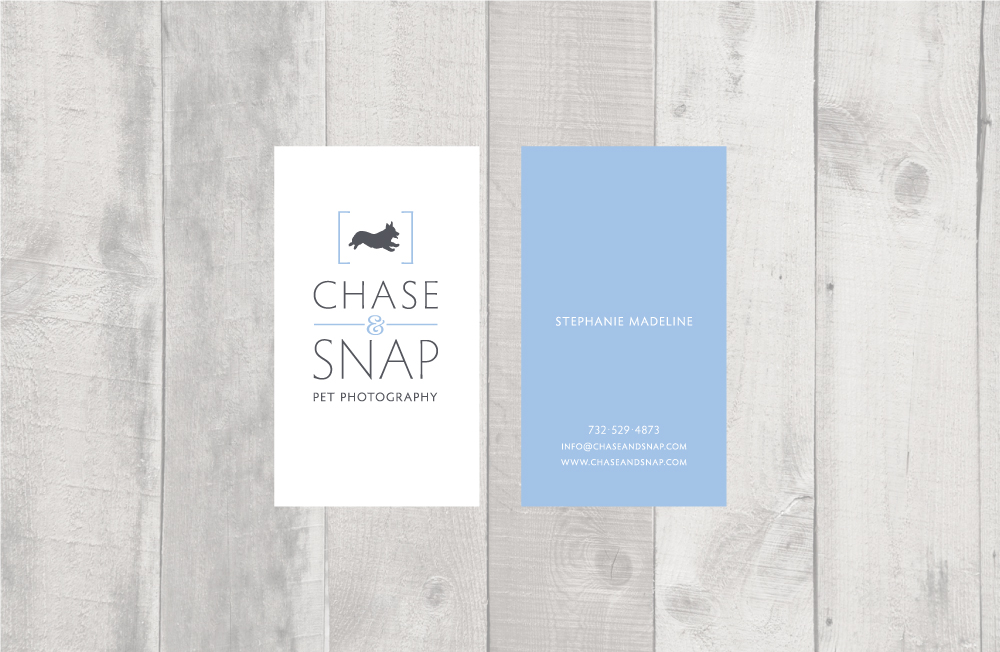 ChaseAndSnap_layout_3
