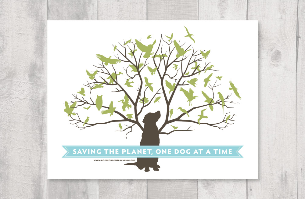 DogsConservation_layout3