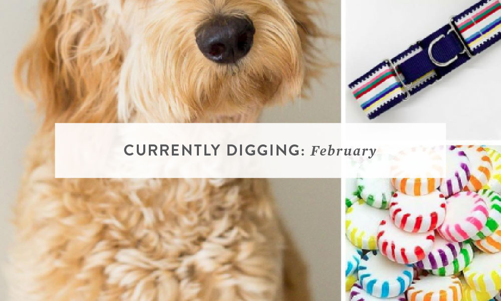 CURRENTLY DIGGING: February