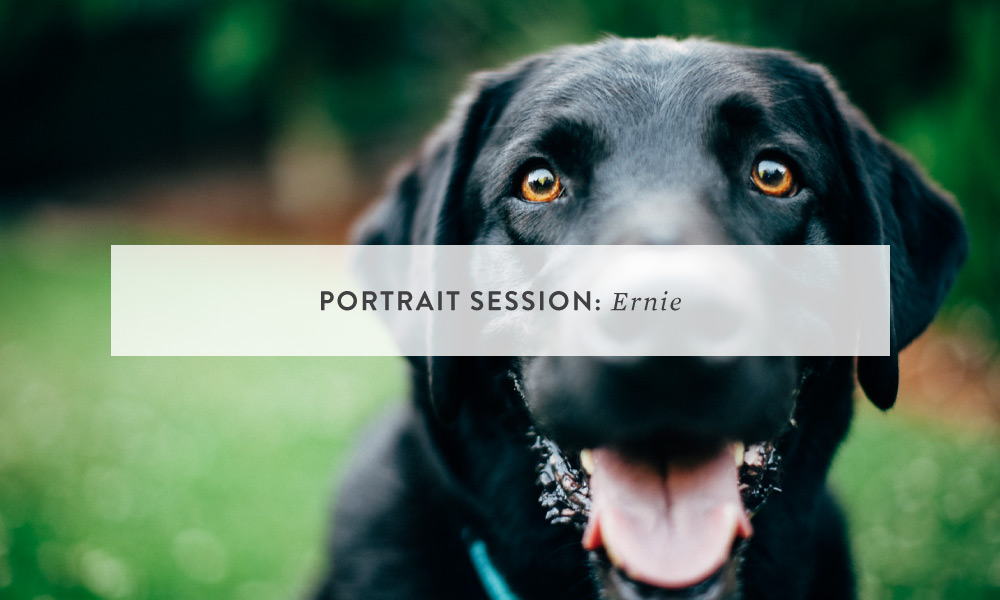 Portrait Session: Ernie