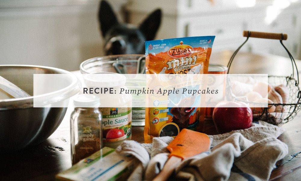 RECIPE: Pumpkin Apple Pupcakes