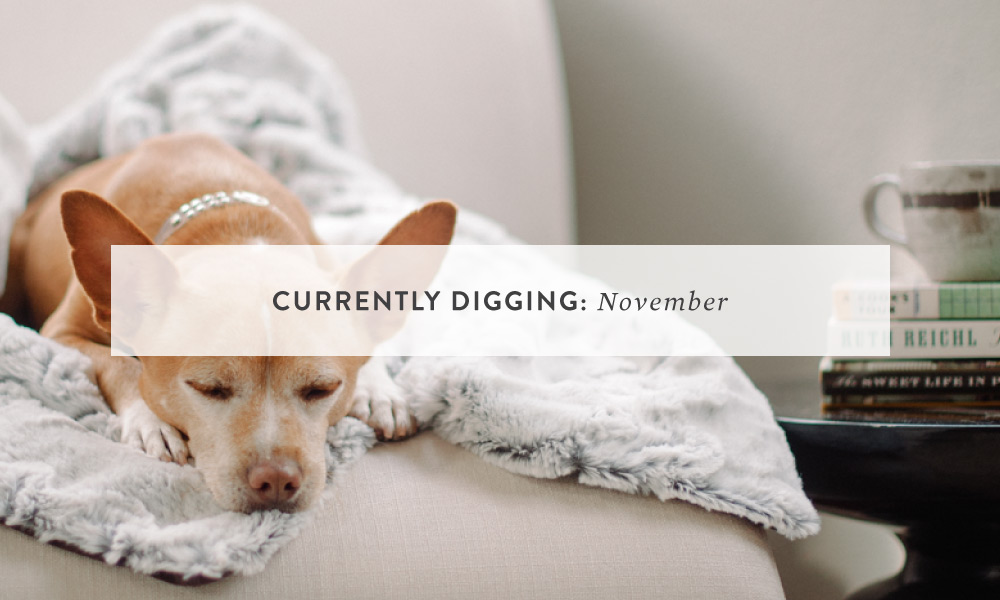 CURRENTLY DIGGING: November