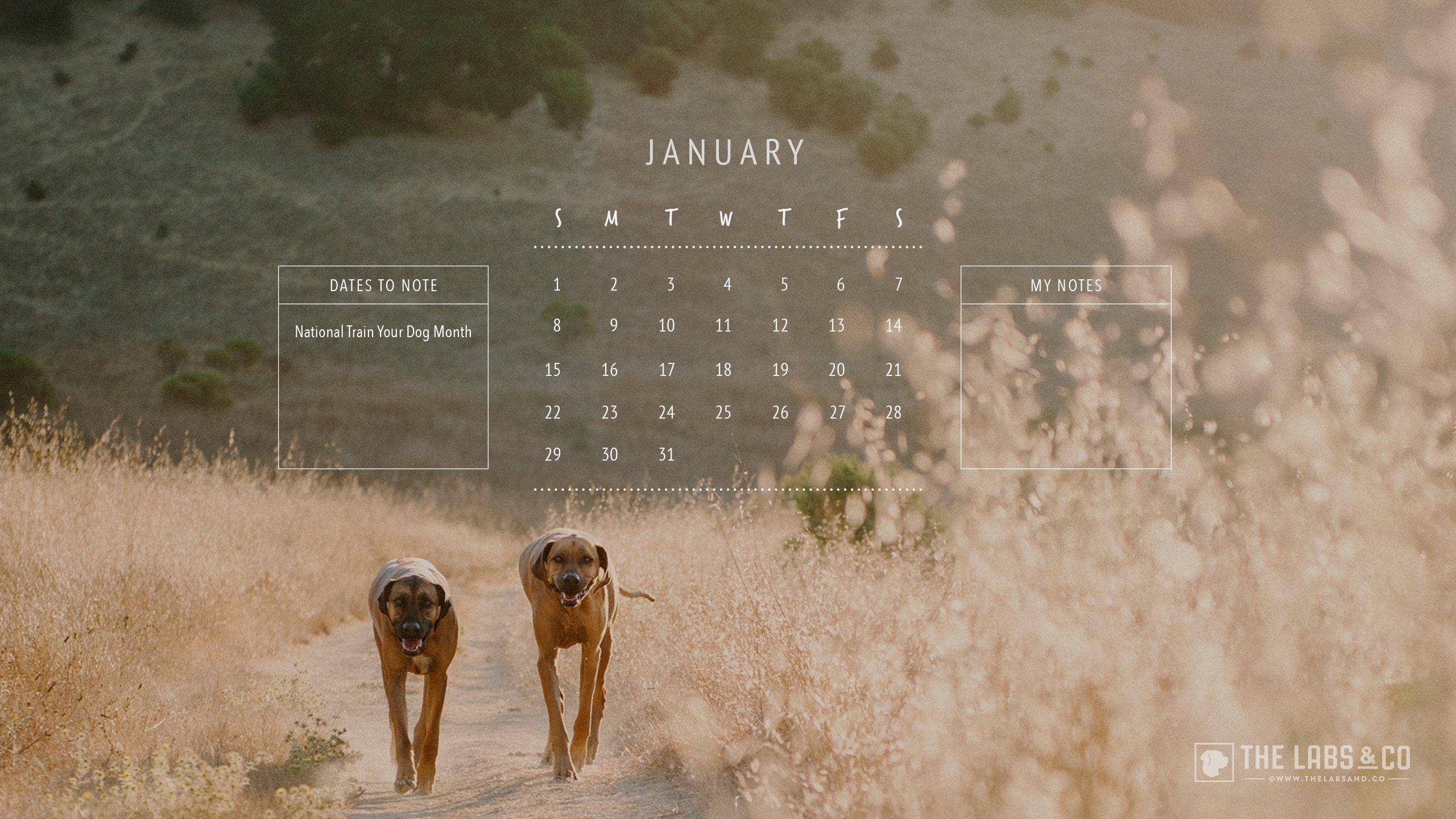 thelabsandco_2017_calendar_template