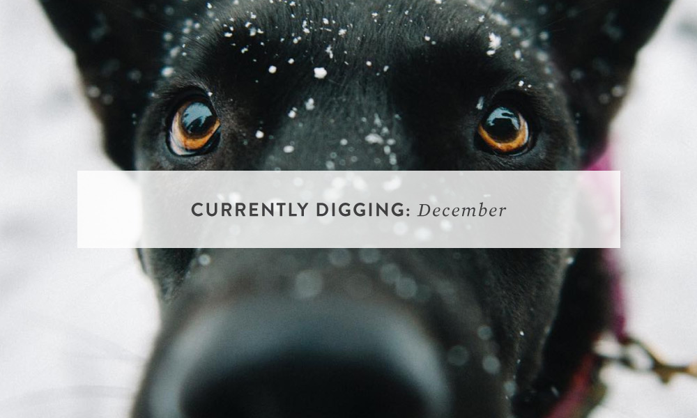 CURRENTLY DIGGING: December