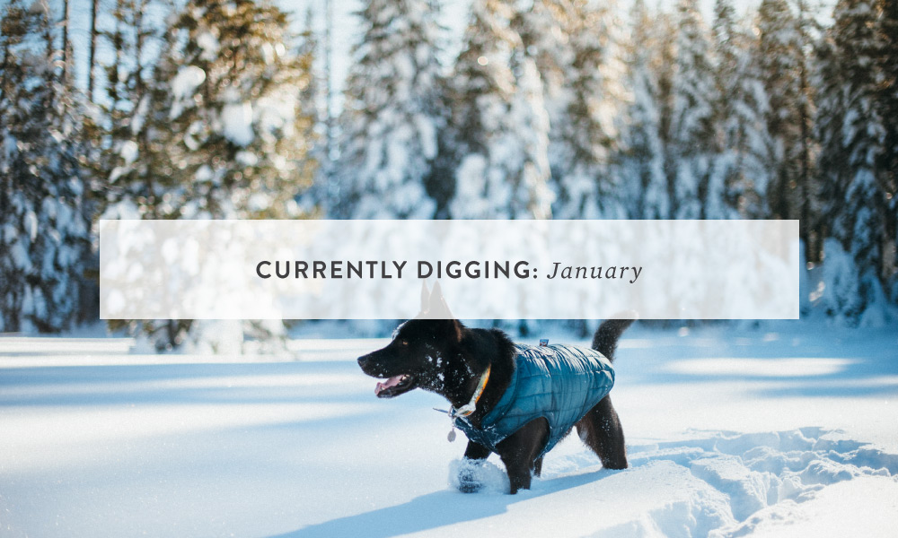CURRENTLY DIGGING: January