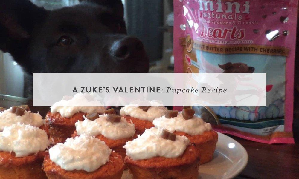 A Zuke's Valentine: Pupcake Recipe